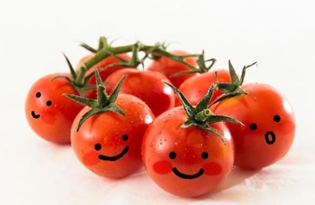 トマトにダイエット効果発見