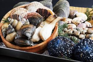 鉄分の多い食べ物「しじみ(5,3mg、100gあたり)、ほっき貝(4.4mg、100g)、あさり(3.8mg、100gあたり)などの貝類」