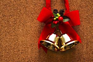 恋人達の理想・最高のクリスマスの過ごし方&プレゼント