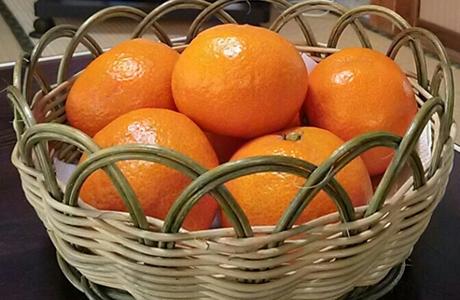 蜜柑を食べ過ぎると手が黄色くなる柑皮症の原因&理由