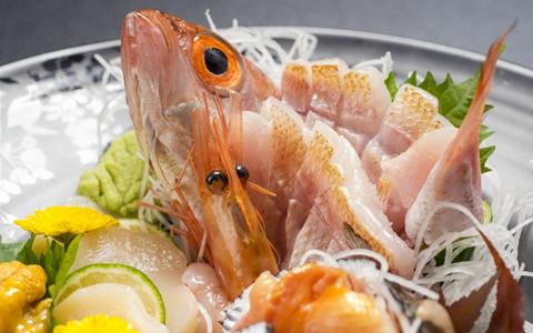 【DHA/EPA】幻の滋養魚「のどぐろ」の食べ方は「煮付け、刺身、塩焼き」で!産地、値段、旬の時期はいつ頃?