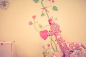 部屋はピンクやフリルなどメルヘンな家にするのが夢