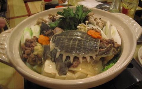 すっぽん鍋、レバー、唐揚げ、雑炊、生血の効果・効能