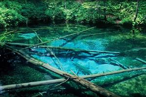 神の子池(斜里郡清里町)