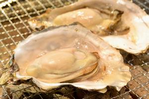 牡蠣(旬の記事:11月頃から2月まで)
