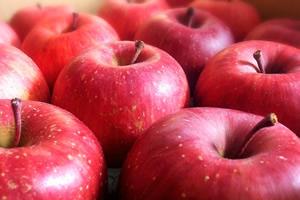 ソラニンを含まないリンゴ