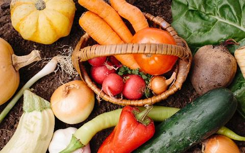 子供の好きな野菜&嫌いな野菜ランキング