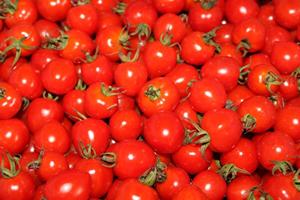 女子が好きな野菜ランキング1位「トマト(支持率66%)」