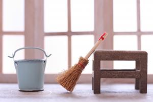 家の掃除・選択、片づけ(44%)