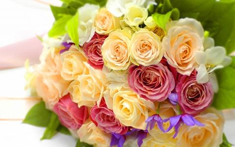 母の日の花・スイーツ以外のプレゼント・ランキング