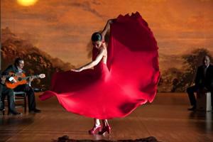 お腹のダイエットなら、スペインの民族芸、スパニッシュダンスのフラメンコ