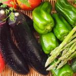 【夏野菜/栽培/家庭菜園】初心者でもデキる!簡単野菜の栽培&人気ランキング「おすすめ人気の夏野菜の種類、簡単に栽培できる夏野菜のランキング」