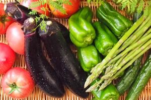 初心者でもデキる!簡単野菜の栽培、家庭菜園&人気ランキング