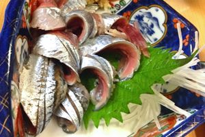 秋刀魚のお寿司、お刺身