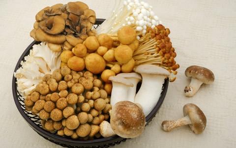 【きのこ/賞味期限】椎茸、しめじ、舞茸やエリンギ等のキノコ類の賞味期限「キノコの賞味期限は、いつまで食べられる?生鮮食品の賞味期限の目安を解説」