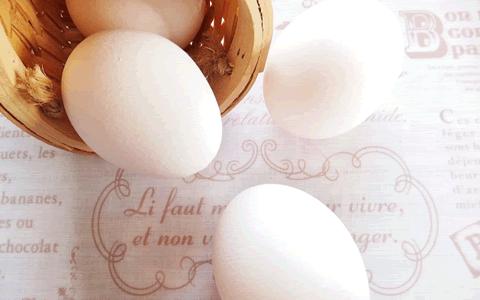 卵料理と1人暮らしの簡単・美味しいズボラ飯