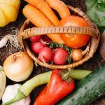 [野菜不足解消、食材&料理レシピ]簡単に、バランスよく摂取する方法&5大栄養素と食材は?「野菜不足を効果的に解消する!おすすめの野菜は?トマト、人参、たまねぎ、ほうれん草、さつまいも!?」