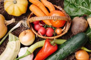 野菜不足解消レシピ、バランスよく摂取する方法&5大栄養素と食材