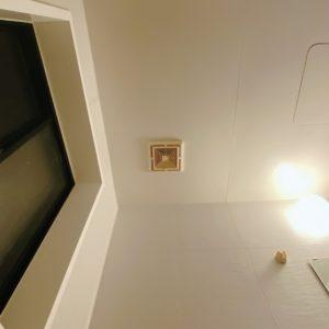 浴室の天井掃除