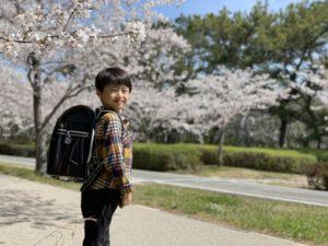 男の子の小学生と、ランドセルの色・カラーの割合